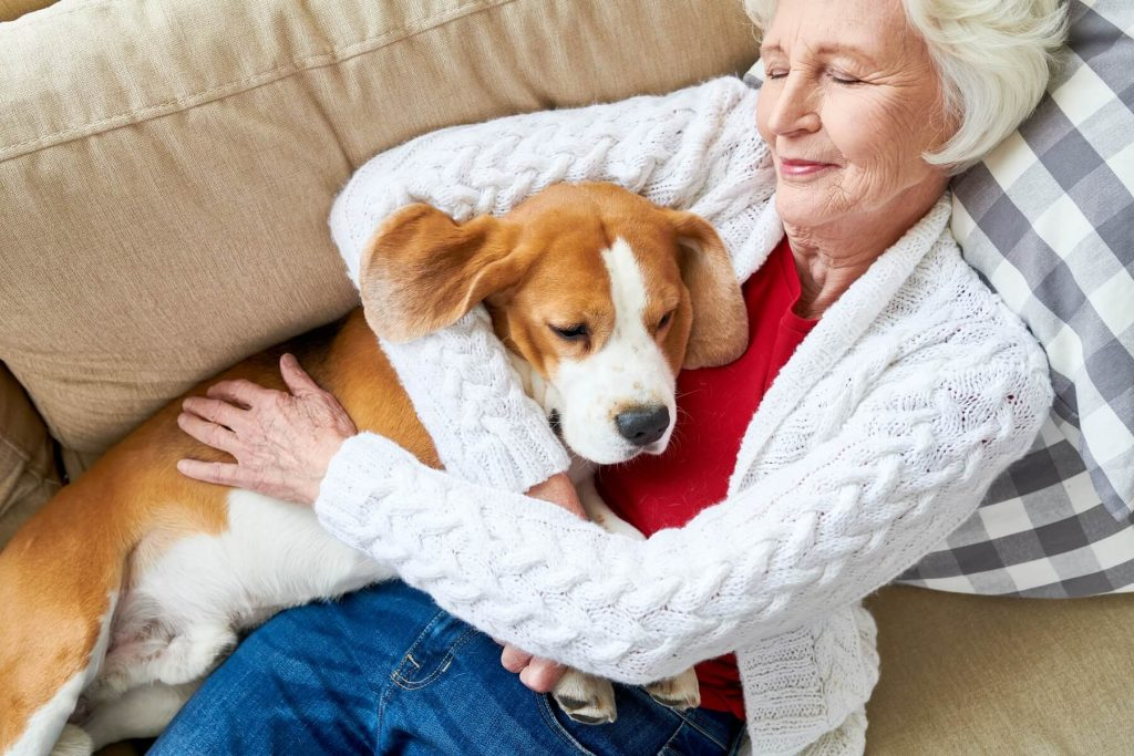 Pet trust can be an important part of your estate plan